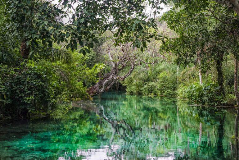 11 destinos de turismo ecológico incríveis para a sua próxima viagem!