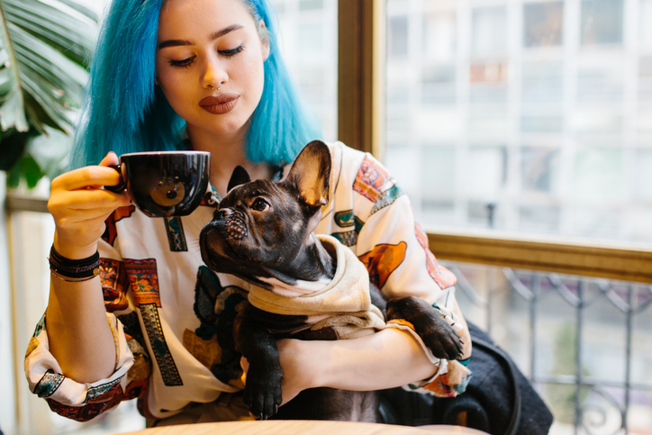 iStock 1150942571 Conheça 4 lugares que aceitam cachorros ou outros pets