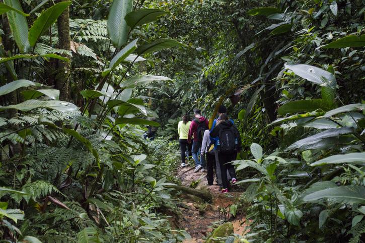 iStock 660738698 Conheça 3 trilhas em Florianópolis para viajantes aventureiros